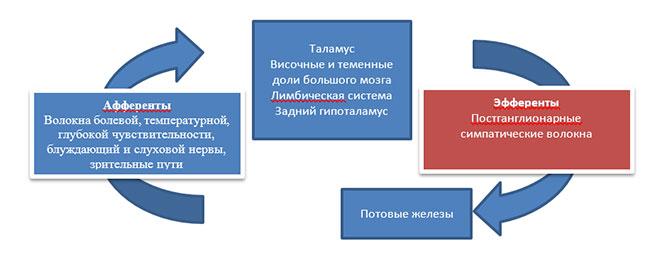 Блок-схема КГР.